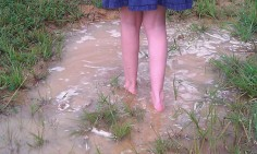 Of course! Summer Vacation Requirement: Walking in the Puddles After the Rain!