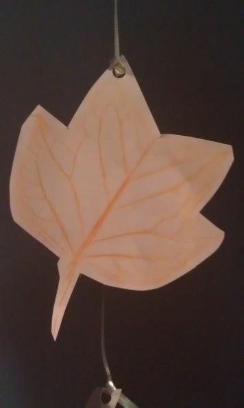 Tulip Poplar Leaf Rubbing