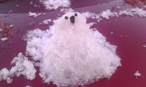 IAGO: Small snow pet on hood of truck
