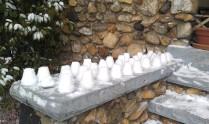 KHAN: Preparing for the Snow Ball Fight