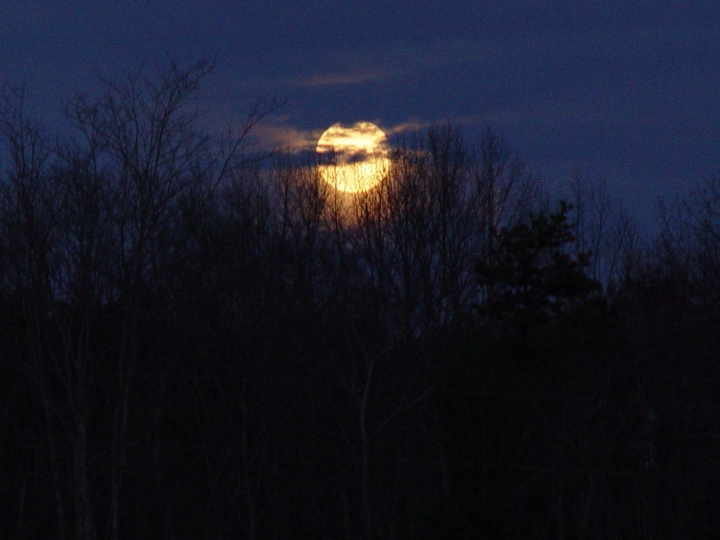 Fall_2007 071  Moon