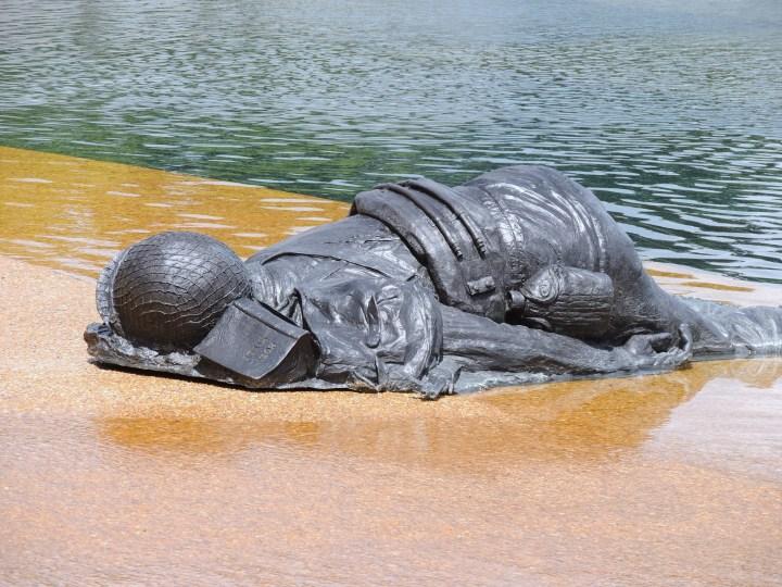 Fallen on the Beach Nikon_Summer_2013 132