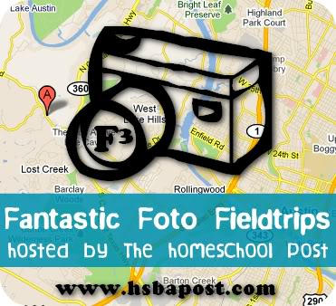 Great ideas for Field Trips at www.hsbapost.com
