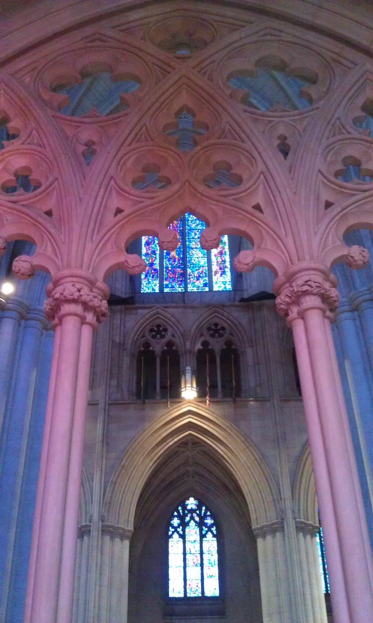 Pink Tracery