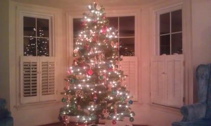 Papa Gene's Christmas Tree