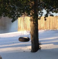 Snow on the Tire Swing